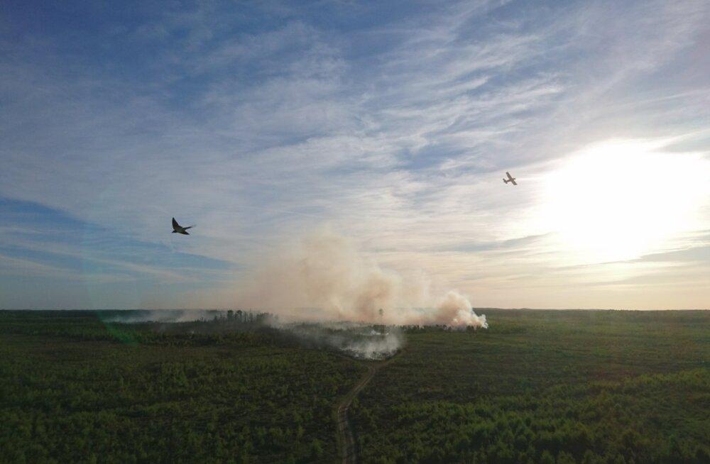 Põleng kaitseväe keskpolügoonil