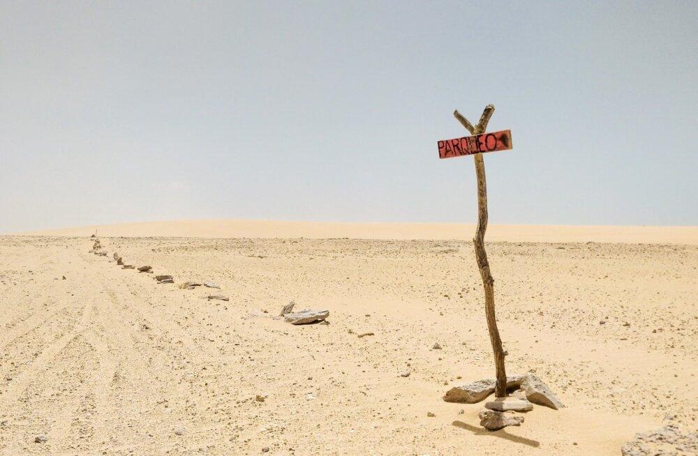 Kogu kõrb on ju kui suur parkla