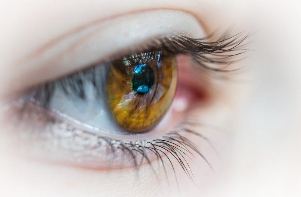 Millal tuleb läätsed prillide vastu vahetada ja mis juhtub, kui jätta läätsed liiga kauaks silma?