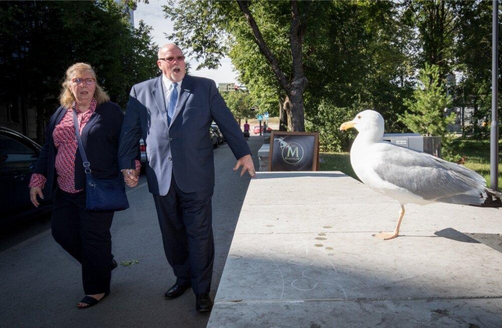 Suursaadik James D. Melville ja tema abikaasa Joanna sõnul pakub Narva peale ornitoloogiliste üllatuste võimalust külastada vene kultuuriruumi Eestist lahkumata. Oma lähetustest Venemaale on Melville'ides kasvanud suur armastus vene kultuuri ja keele vast