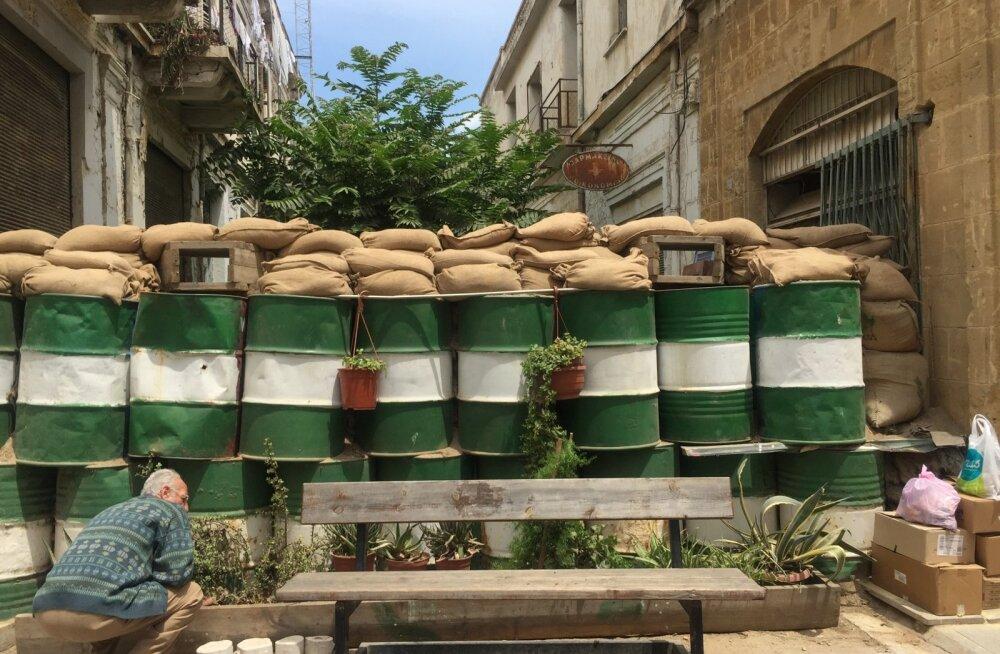 Selleks et puhvertsoon ehk roheline joon, nagu kohalikud seda nimetavad, nii depressiivne ei tunduks, istutavad kreeklased sinna äärde lilli.