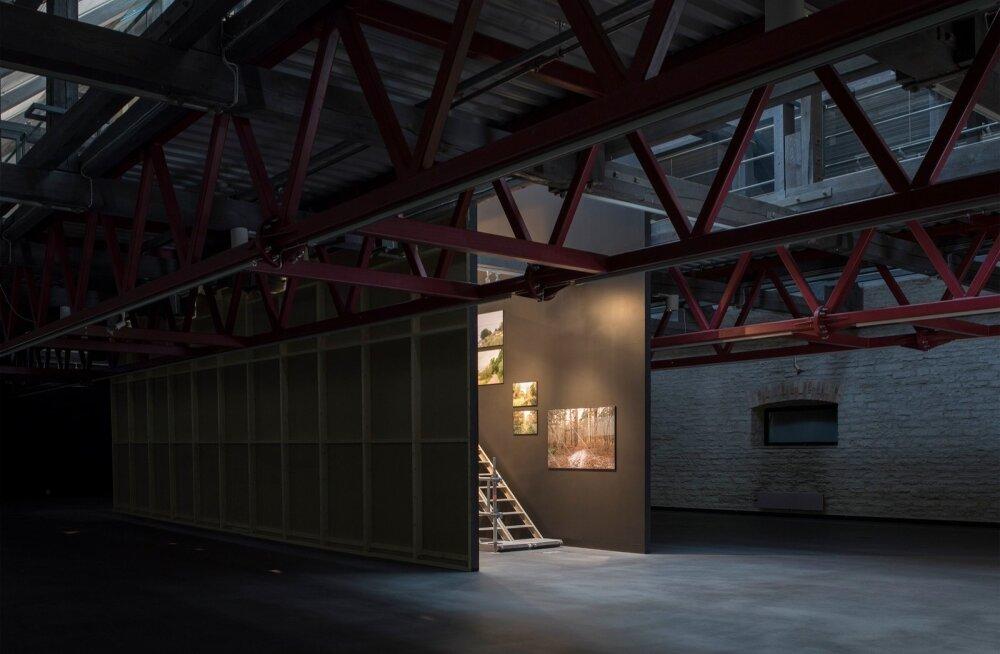 Arhitekt Paco Ulmani foto- ja ruumimängud