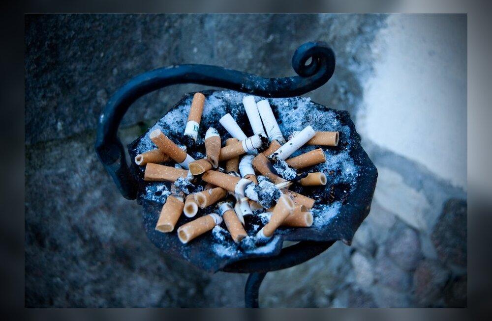 suitsukondid