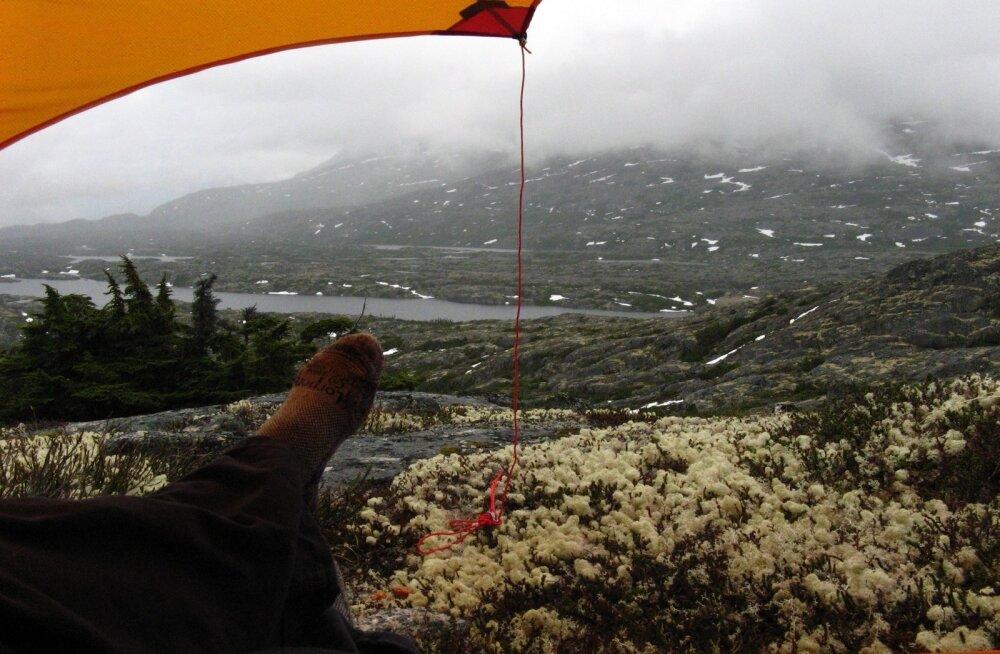 METSIK PÕHJALA: Parimad vaated Alaskale avanevad sageli telgiukselt.