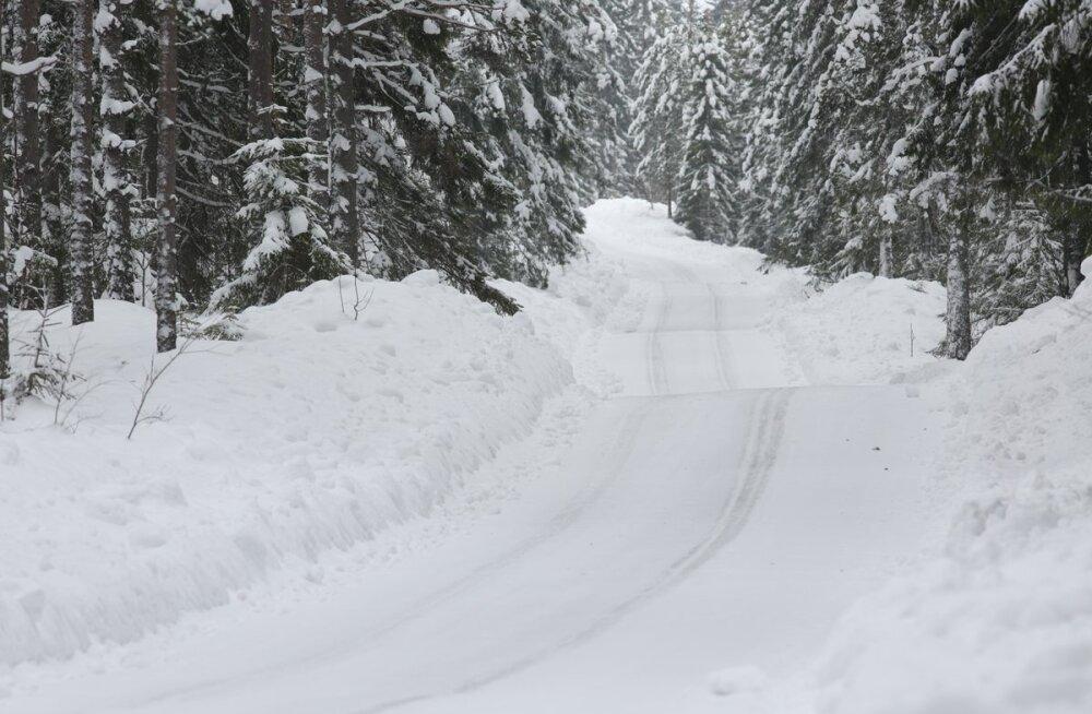 FOTOD | Talve võlumaa! Lumised ja jäised teed on Rootsi ralliks valmis