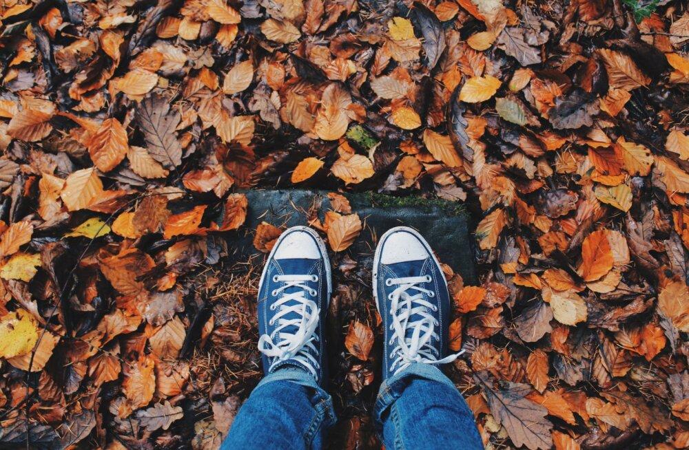 Как привлечь деньги и удачу в октябре 2018 года: советы по знаку зодиака