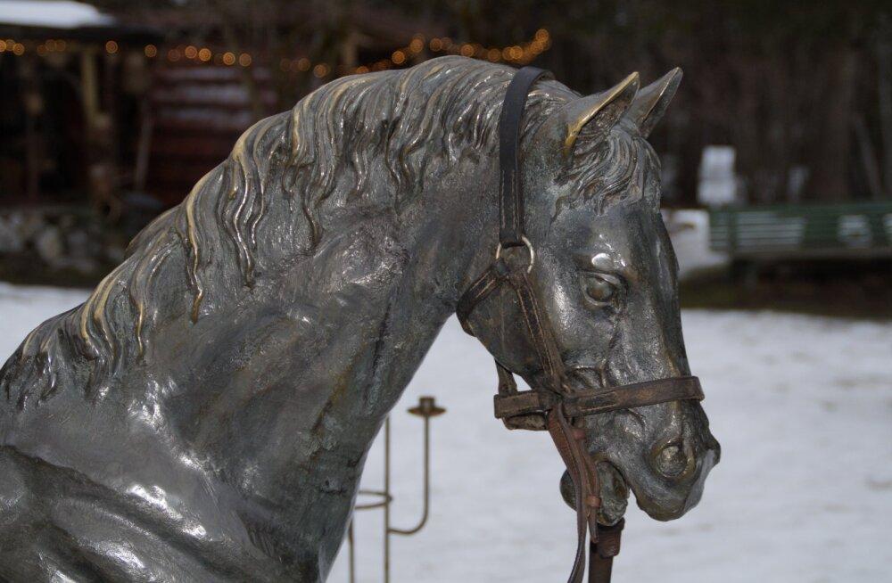 Saksa farmer saab allikast leitud iidse hobusepea eest miljoni