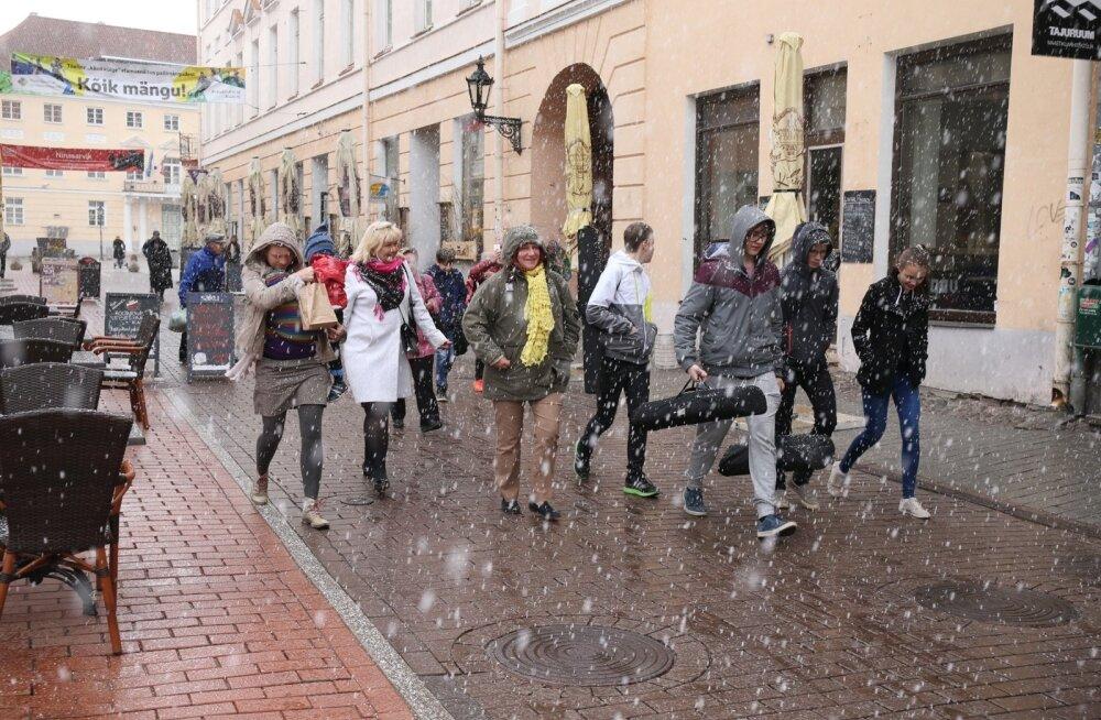 ФОТО DELFI: Тарту. Май. Послеобеденный снег
