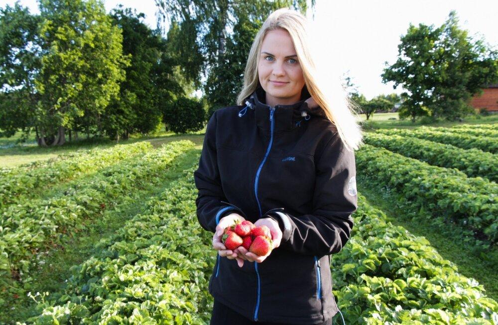 Tänavu maaülikooli cum laude lõpetanud Annika Jõemaa keskendub nüüd oma ärile – maasikakasvatusele Viljandimaal.