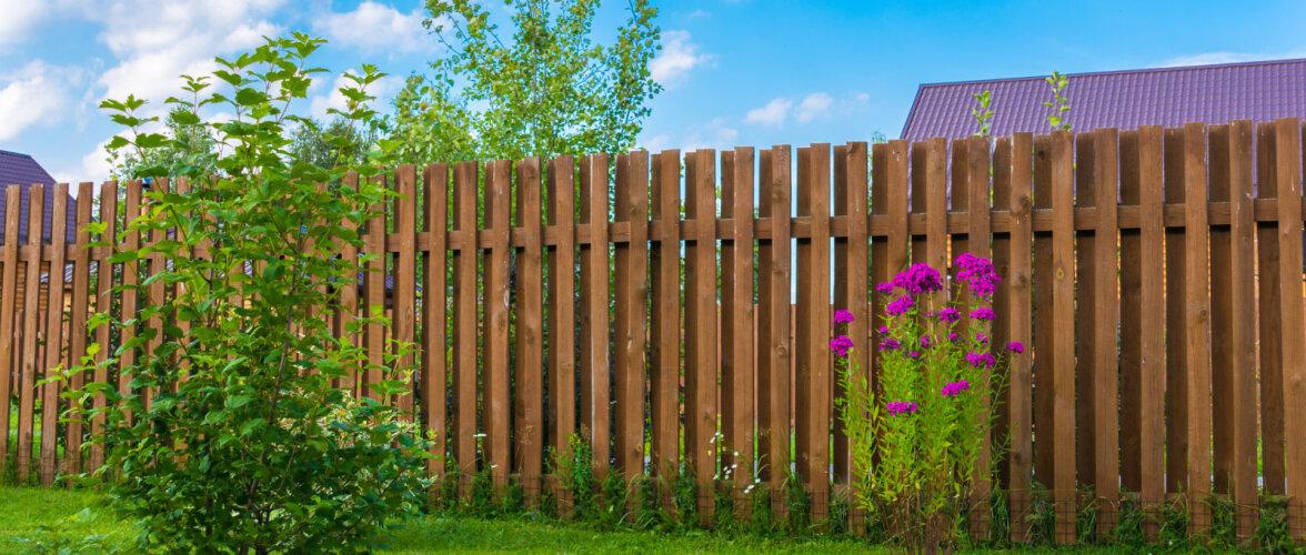 Mida võiks teada puitaia ehitamisest?