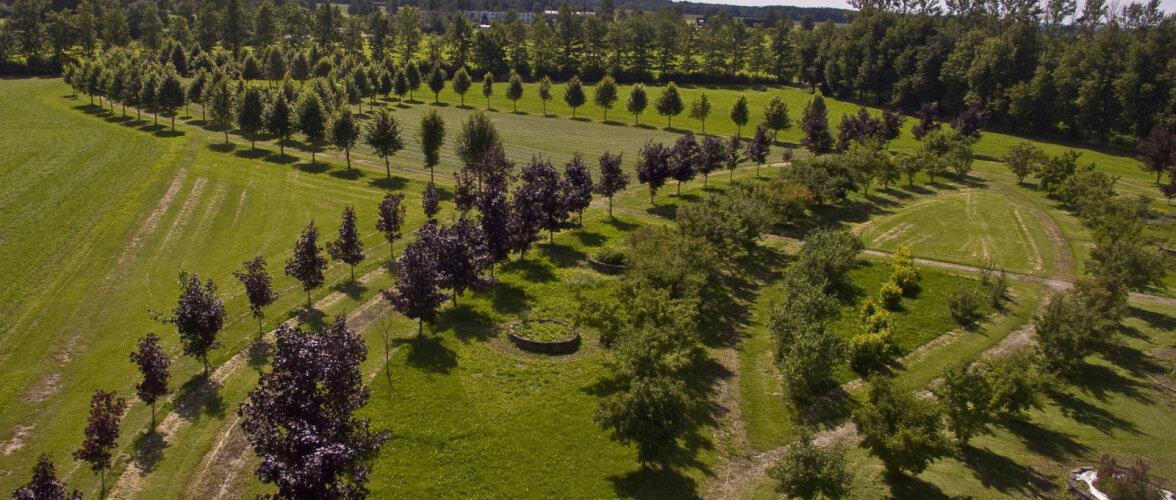 Tartu Rahvaülikool ootab aiandusalastele koolitustele. Juhendaja Kadri Maikovi näpunäited aia kujundajale!