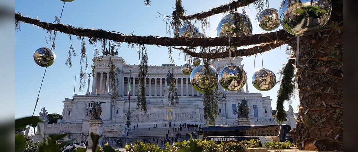 Праздничная елка в Риме засохла до Рождества