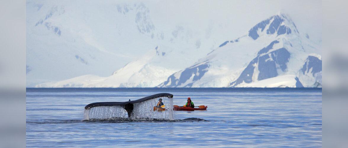 Polaaruurija Timo Palo viib huvilised reisile Antarktikasse