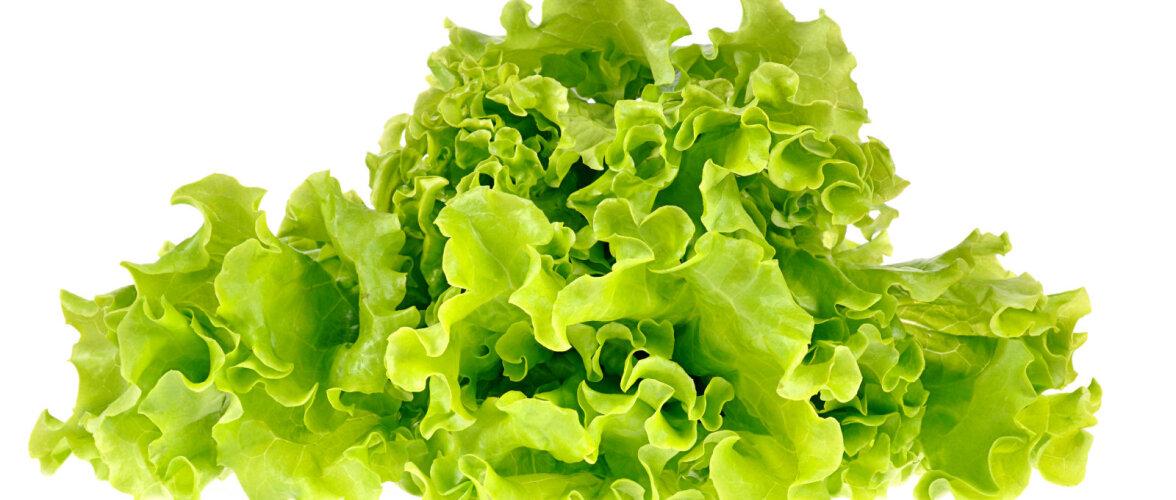 Kas tead, milline on parim viis roheliste salatite säilitamiseks? Vaata järele!