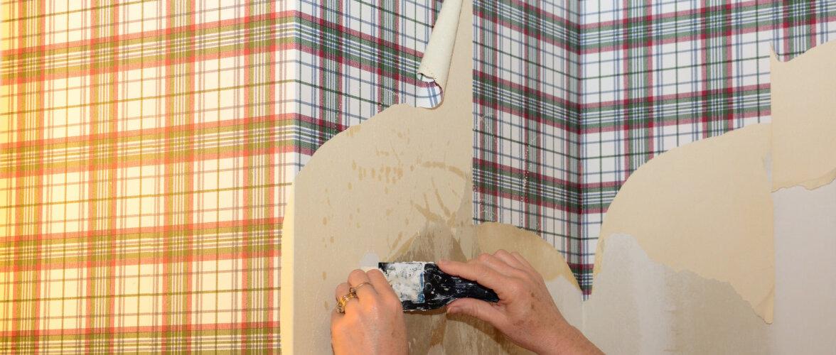 Vana tapeet seinalt maha – tüütu, kuid vajalik töö. 8 sammu vana tapeedi eemaldamiseks