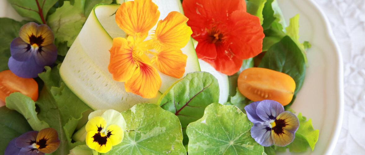 Õied taldrikul ehk milliseid lilli võib süüa?