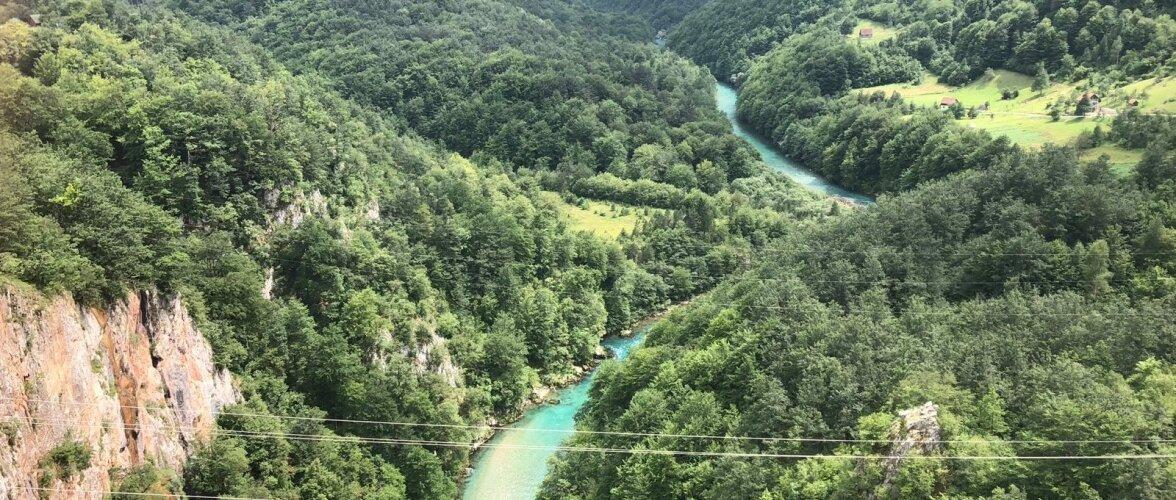 Montenegro reis