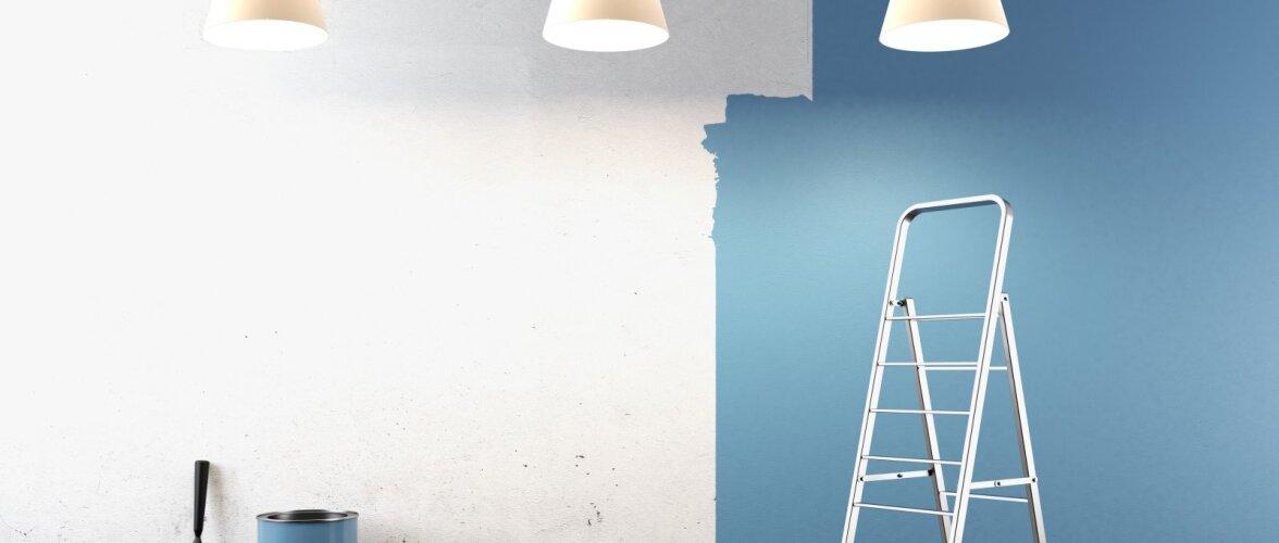 Kaheksa olulist sammu, mida seinte kruntimisel ja värvimisel silmas pidada