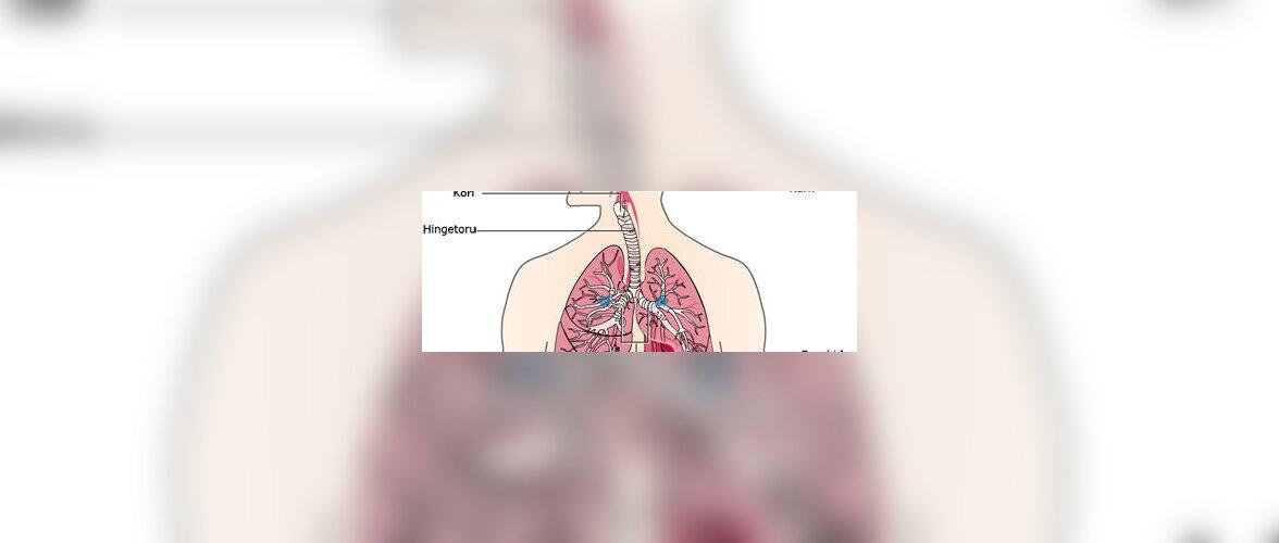 Kaasaegne ravi hoiab astma kontrolli all