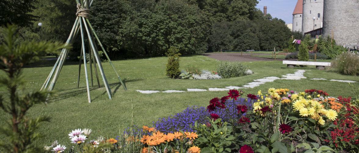 FOTOD │ Vaata, imetle ja nopi ideid — augustipäike lillefestivali iluaedades