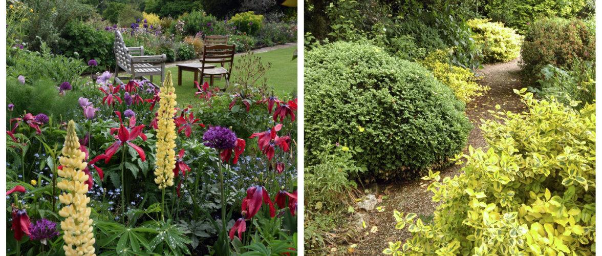 AIADISAINER: kuidas teha kindlaks oma aia muld ja plaanida taimealasid