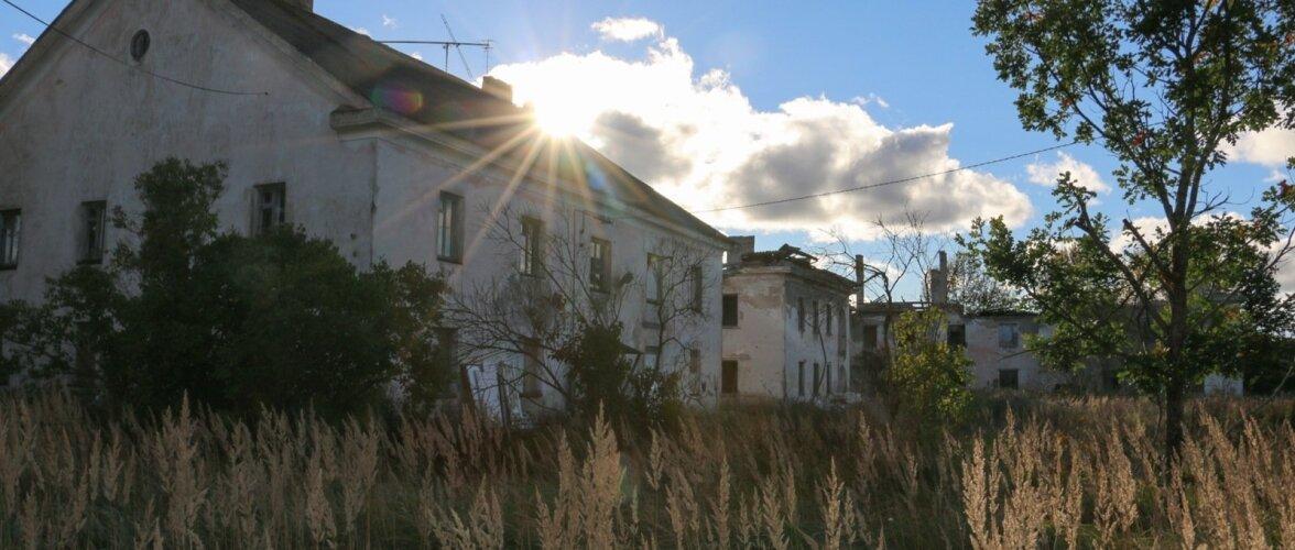 Ka Eestis on hüljatud linnu: Viivikonna