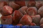 A-hepatiidi epideemia: kuidas ikkagi pääses kole viirus külmutatud maasikatesse?