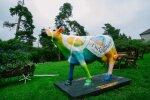 Värviline piimalehm kutsub Eesti inimesi piimatooteid tarbima
