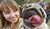 PÄEVA ANEKDOOT: Lahke koer