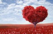 Iga teekond alaku südamest: usalda oma sisetunnet