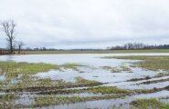 Põllud on üleujutatud