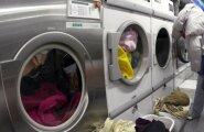Mehine nõu: pesumasina ostmine – 5 asja, mida teada