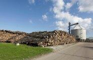 Kõige rohkem rõhuvad energiamahukat puitmassitootmist arendavat Estonian Celli suured elektri- ja gaasikulud. Just nende kulude vähendamis eks rajati 2014. aastal oma biogaasijaam, mis siiani Eesti suurim.