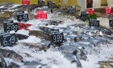 Где в столице можно найти свежую рыбу и где наилучший выбор и самые выгодные цены