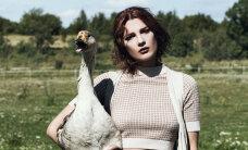 """FOTOD: """"Eesti tippmodelli"""" osalised poseerisid ohtlikul fotosessioonil koos veiste, hobuste ja hanedega"""