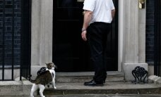 Kass Larry jääb Cameronide pere väljakolimisest hoolimata Briti peaministri residentsi elama
