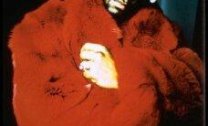 R. Kelly vägistas alaealise