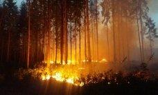 ФОТО и ВИДЕО: Лесной пожар в Валгамаа уничтожил 45 гектаров леса