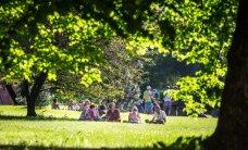 Парк Тондилоо в Ласнамяэ будет готов к концу лета