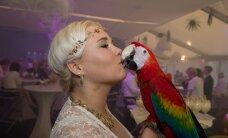 JÄTSIPIDU! Balbiino jäätisehooaja avapeol lustitasid magusasõpru inglid, papagoid ja maod