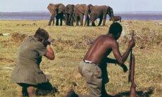 Briti koomik ja loomakaitsja Ricky Gervais: trofeekütid väidavad, et armastavad oma peret, aga seda teevad ka elevandid, keda nad kütivad