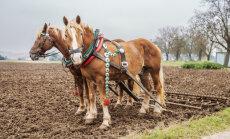Rahvakalendri järgi on täna künnipäev, mis on aiapidajate ja põllumeeste jaoks tähtis püha