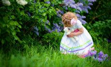 Taasavastage lapsepõlv - vanaemade aiad on moes