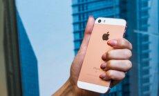 iPhone SE on loodud arvestades inimesi, kes tunnevad ennast suurte tahveltelefonide maailmas eksinuna.