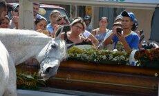 Ka loomad leinavad: hobune jätab matusel südamlikult hüvasti oma parima sõbraga
