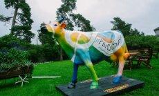 Toiduliidu piimalehm jõudis täna Tallinnasse