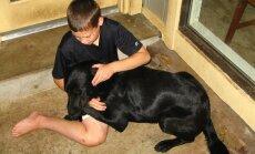 Koer ei taha üksinda koju jääda ja nutab — mida teha?