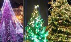 Голосуем за самую красивую елку: где красивее — в Таллинне, Риге или Вильнюсе?