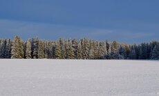 SAADA FOTO: Minu kolmevärviline Eesti