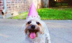 20 asja, mida pead kindlasti enne 30. eluaastat tegema